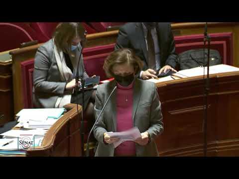 Débat en séance sur l'opération Barkhane : mes questions à Florence Parly et Jean-Yves Le Drian