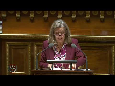 """Mon intervention en séance publique sur la mission """"Action extérieure de l'État"""""""