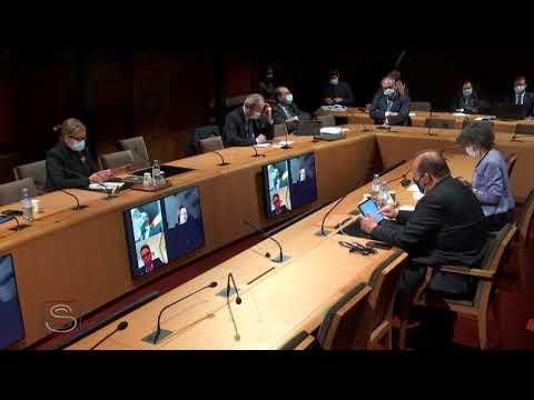 Mes questions aux députés européens Arnaud Danjean et Mounir Satouri