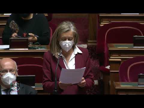 Formation des conseillers des Français de l'étranger : mon intervention en séance